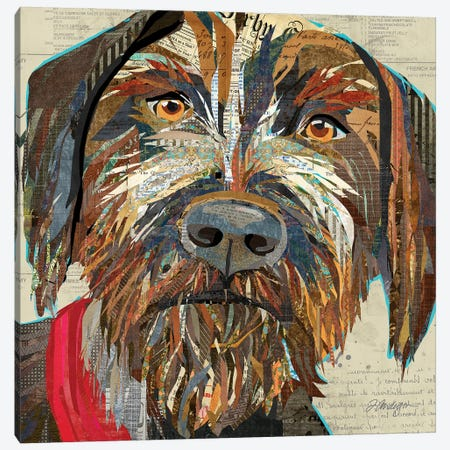 Collage German Wirehaired Pointer Canvas Print #TRA184} by Traci Anderson Canvas Print