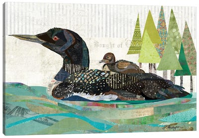 Avon Lake Loons Canvas Art Print