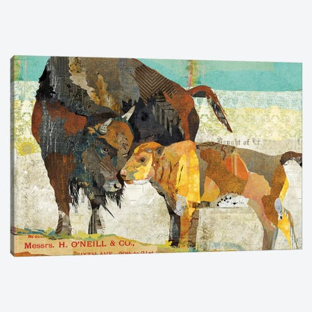 Bison Son Canvas Print #TRA18} by Traci Anderson Art Print