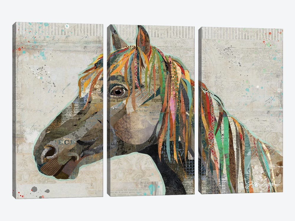 Pryor Mountain Wild Stallion by Traci Anderson 3-piece Canvas Wall Art