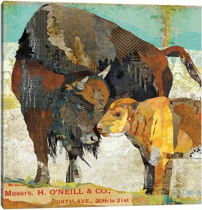 Bison And Calf Canvas Art Print