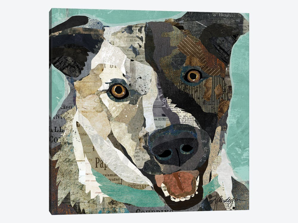 Rescued I by Traci Anderson 1-piece Art Print
