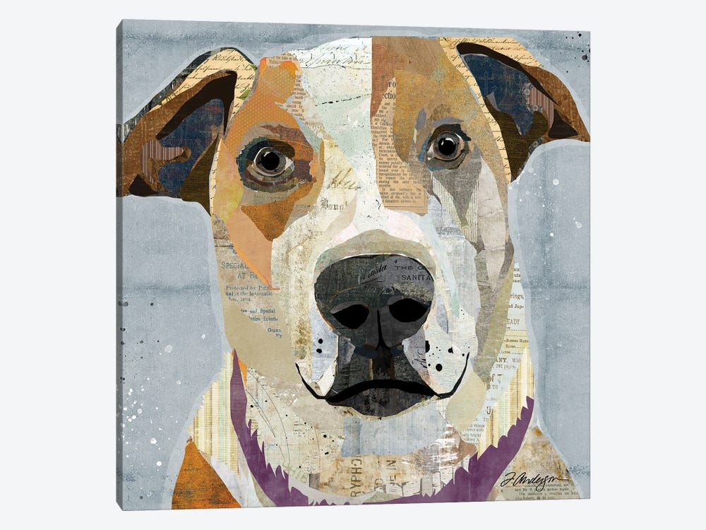 Rescued II by Traci Anderson 1-piece Canvas Artwork