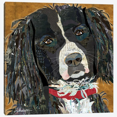 Springer Spaniel Collaged Canvas Print #TRA199} by Traci Anderson Canvas Art Print