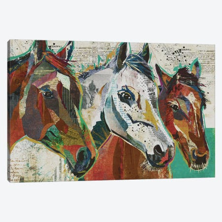 3 Horses Canvas Print #TRA2} by Traci Anderson Canvas Artwork