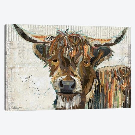 Colorful Highland Cow Canvas Print #TRA38} by Traci Anderson Art Print