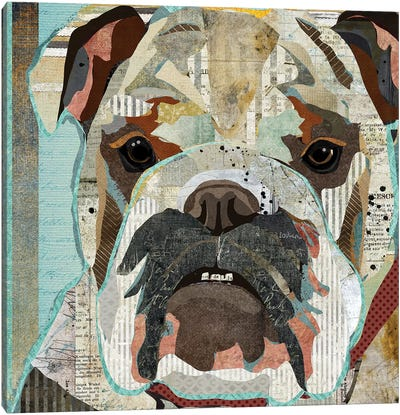 English Bulldog Canvas Art Print