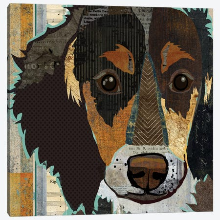 Long Haired Dachshund I 3-Piece Canvas #TRA75} by Traci Anderson Canvas Artwork