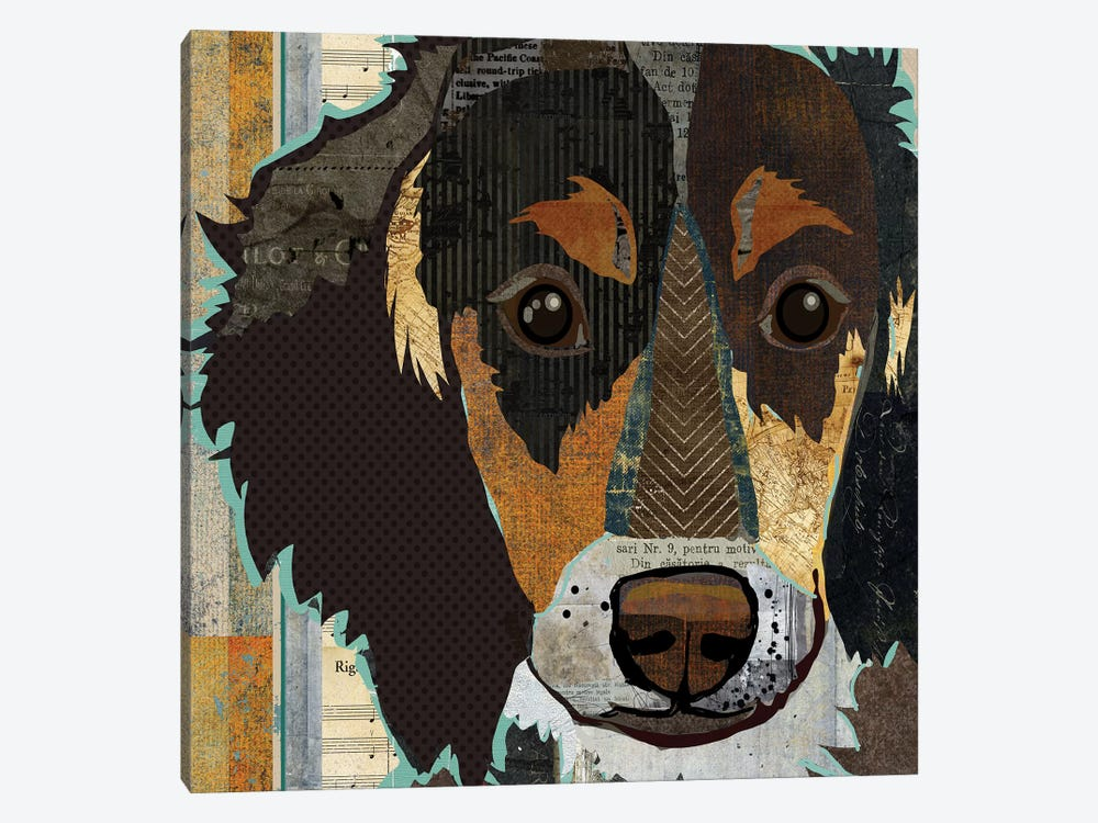 Long Haired Dachshund I by Traci Anderson 1-piece Canvas Art Print