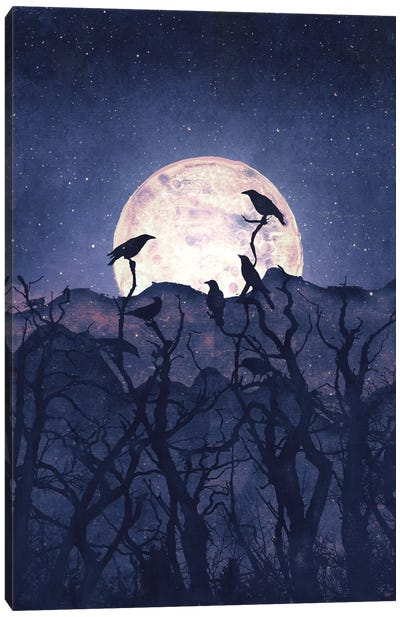 Midnight Chorus Canvas Art Print