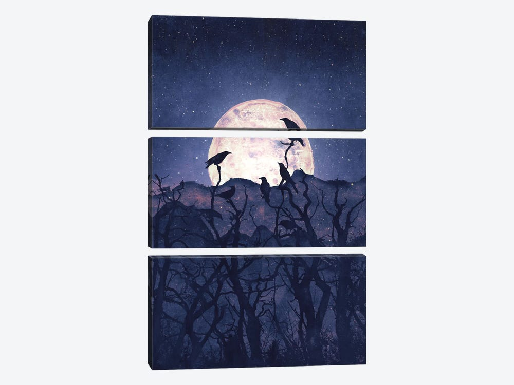 Midnight Chorus by Tracie Andrews 3-piece Canvas Art
