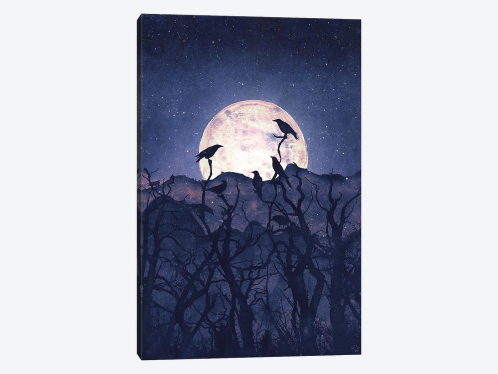 Midnight Chorus by Tracie Andrews 1-piece Canvas Wall Art