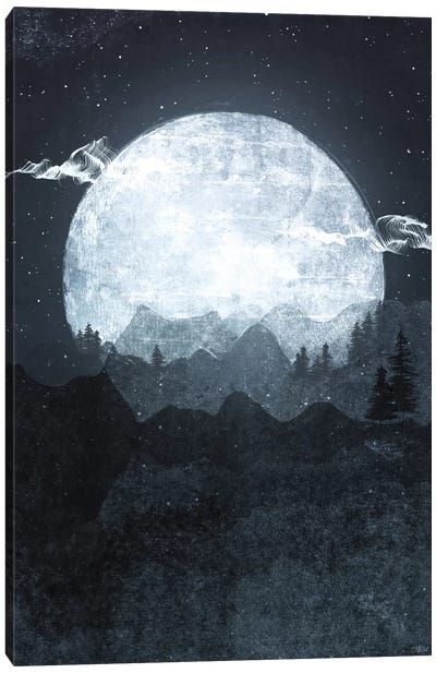 Moonrise by Tracie Andrews Canvas Art Print