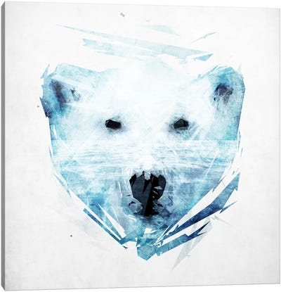 Polar Bear Canvas Print #TRC43