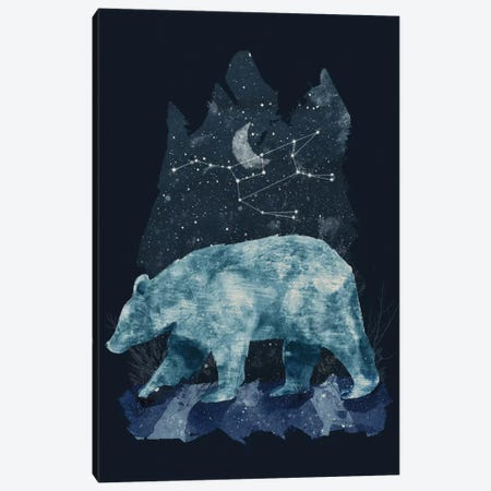 The Great Bear Canvas Print #TRC58} by Tracie Andrews Art Print