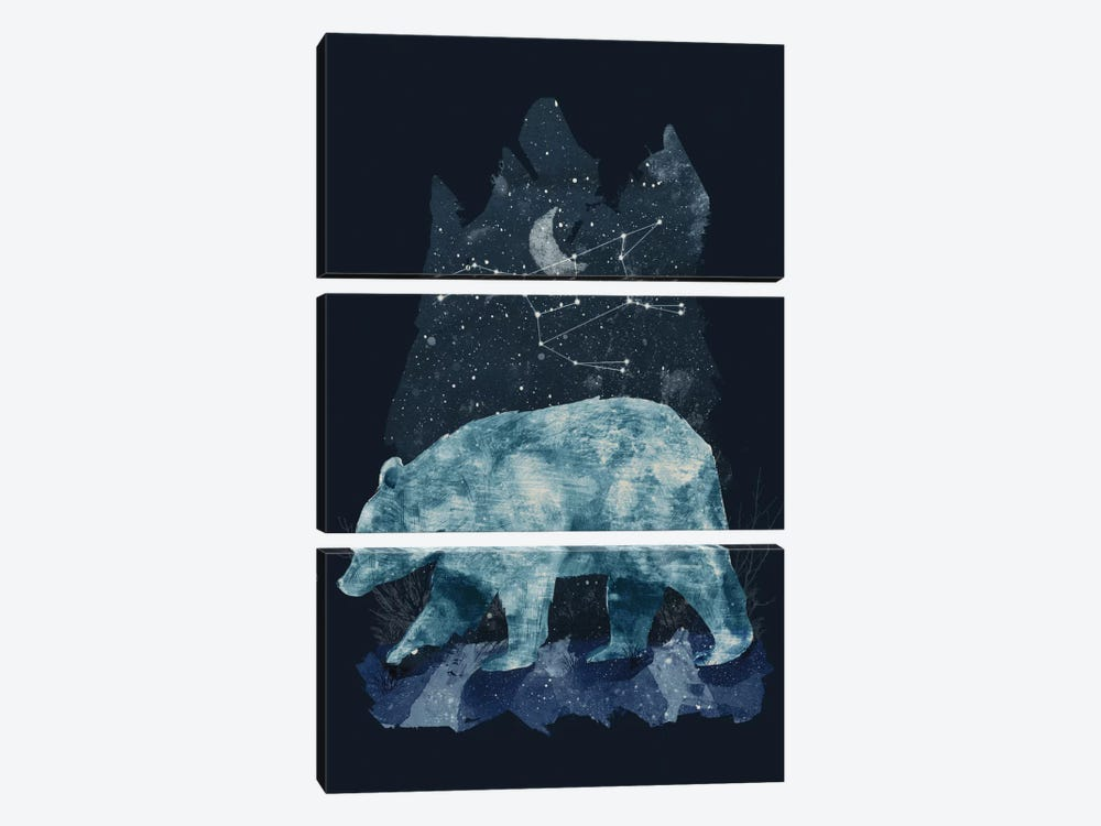 The Great Bear by Tracie Andrews 3-piece Canvas Art Print