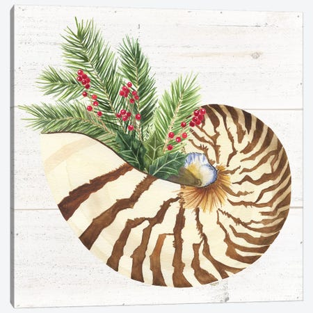 Christmas By The Sea Nautilus Canvas Print #TRE106} by Tara Reed Canvas Wall Art