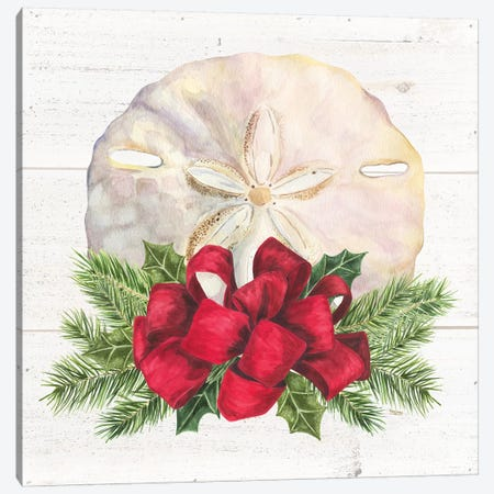 Christmas By The Sea Sanddollar Canvas Print #TRE107} by Tara Reed Canvas Wall Art
