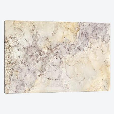 Gold & Silver Mineral Abstract Canvas Print #TRE11} by Tara Reed Art Print