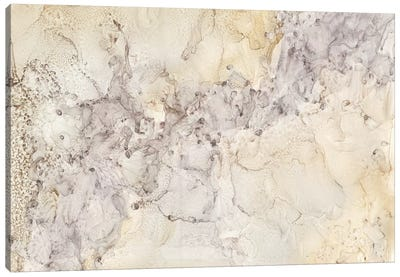 Gold & Silver Mineral Abstract Canvas Art Print