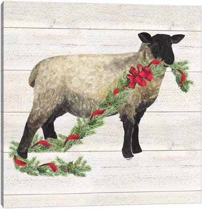 Christmas On The Farm V - Sheep Canvas Art Print