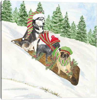 Dog Days Of Christmas III - Sledding Canvas Art Print