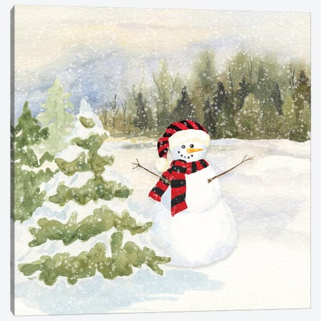 Snowman Wonderland II - Red Black Santa Hat Canvas Print #TRE185} by Tara Reed Canvas Artwork