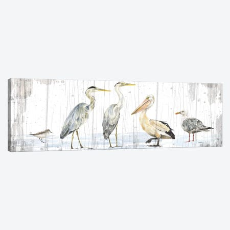 Birds of the Coast Rustic Panel Canvas Print #TRE193} by Tara Reed Canvas Artwork