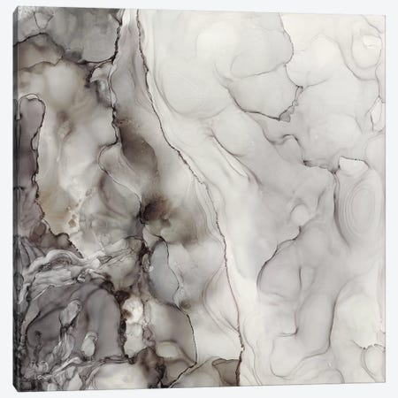 Portland Skies Square Trio I Canvas Print #TRE200} by Tara Reed Canvas Artwork