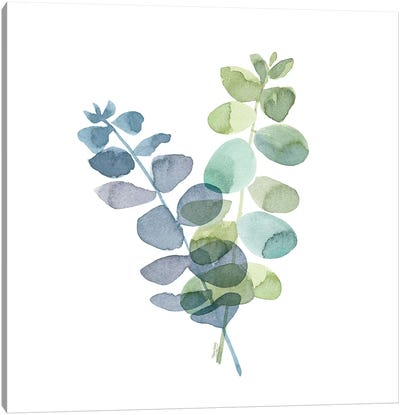 Natural Inspiration Blue Eucalyptus on White I Canvas Art Print