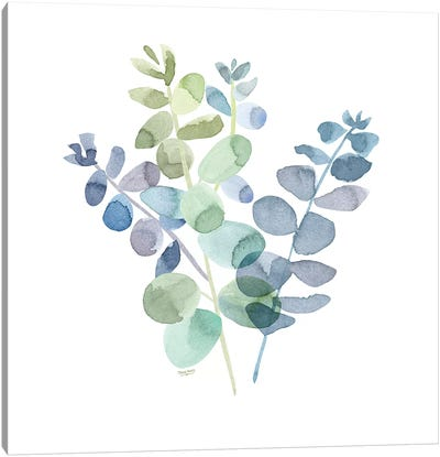 Natural Inspiration Blue Eucalyptus on White II Canvas Art Print