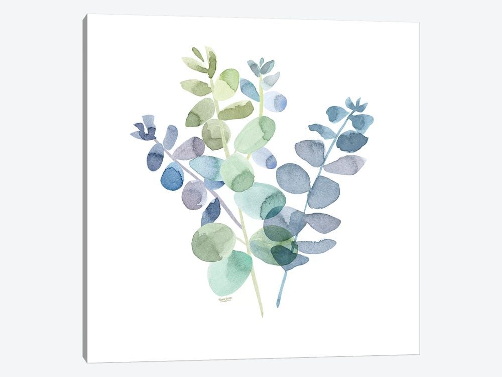 Natural Inspiration Blue Eucalyptus on White II by Tara Reed 1-piece Canvas Print