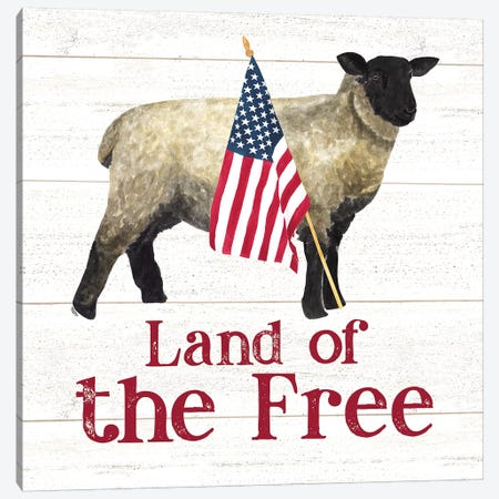 Land of the Free Square III Canvas Print #TRE258} by Tara Reed Canvas Print