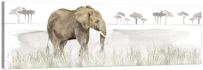 Serengeti Elephant Horizontal Panel Canvas Art Print