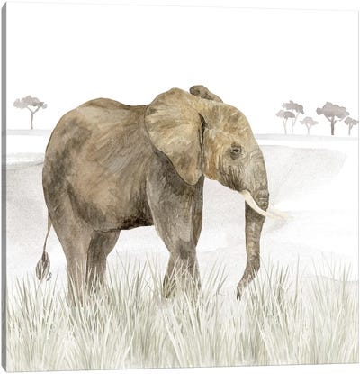 Serengeti Elephant Square Canvas Art Print