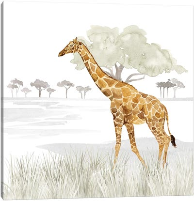 Serengeti Giraffe Square Canvas Art Print