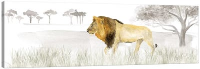 Serengeti Lion Horizontal Panel Canvas Art Print