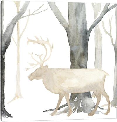 Winter Forest Elk Canvas Art Print