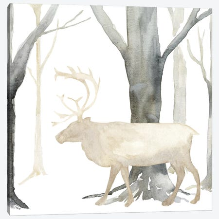 Winter Forest Elk Canvas Print #TRE270} by Tara Reed Canvas Print