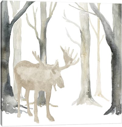 Winter Forest Moose  Canvas Art Print