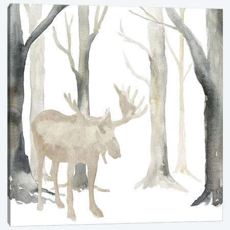 Winter Forest Moose  Canvas Print #TRE272} by Tara Reed Art Print