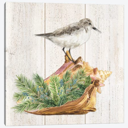 Christmas on the Coast Aqua III Canvas Print #TRE302} by Tara Reed Art Print