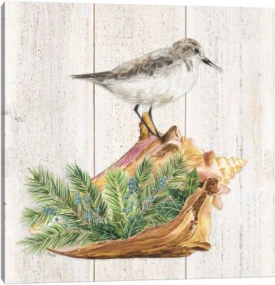 Christmas on the Coast Aqua III Canvas Art Print