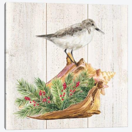 Christmas on the Coast III Canvas Print #TRE306} by Tara Reed Canvas Art