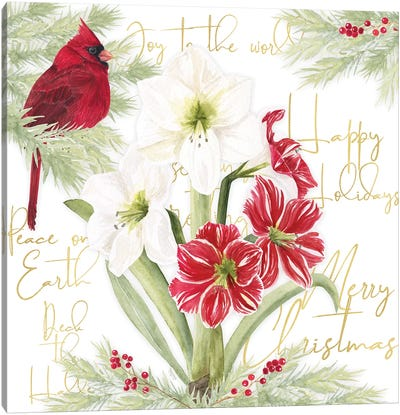Merry Amaryllis II Canvas Art Print