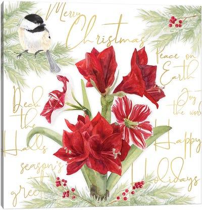 Merry Amaryllis IV Canvas Art Print
