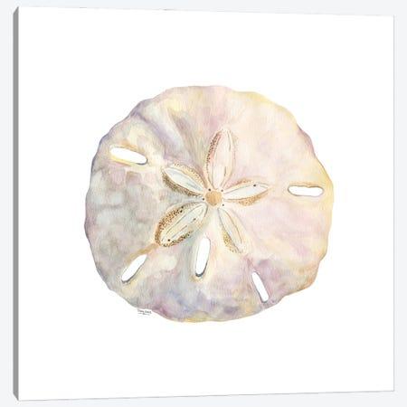 Oceanum Shells White IV-Sand Dollar Canvas Print #TRE549} by Tara Reed Canvas Print