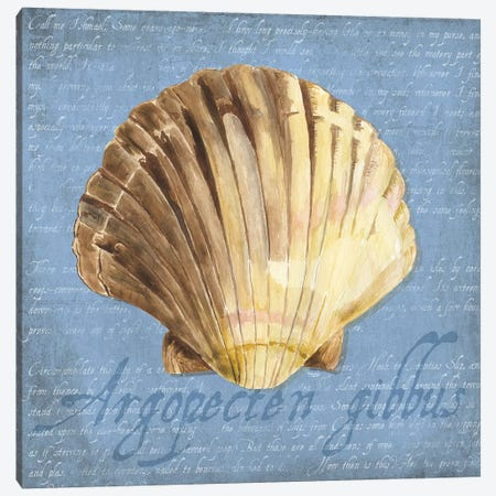 Oceanum Shells Blue V Canvas Print #TRE57} by Tara Reed Canvas Wall Art