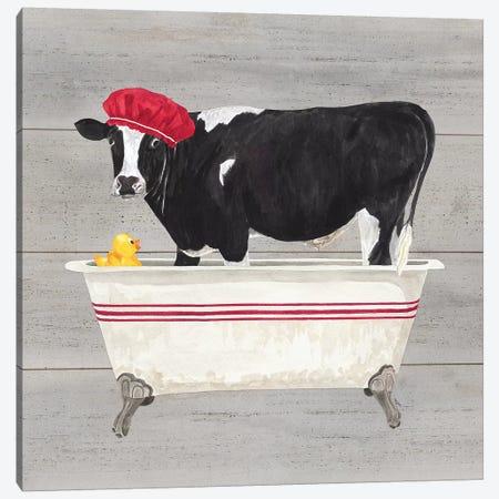 Bath Time For Cows Tub Canvas Print #TRE7} by Tara Reed Canvas Art Print