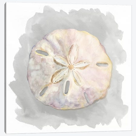 Shells On Grey IV Canvas Print #TRE80} by Tara Reed Canvas Art